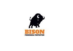 Brand Bison